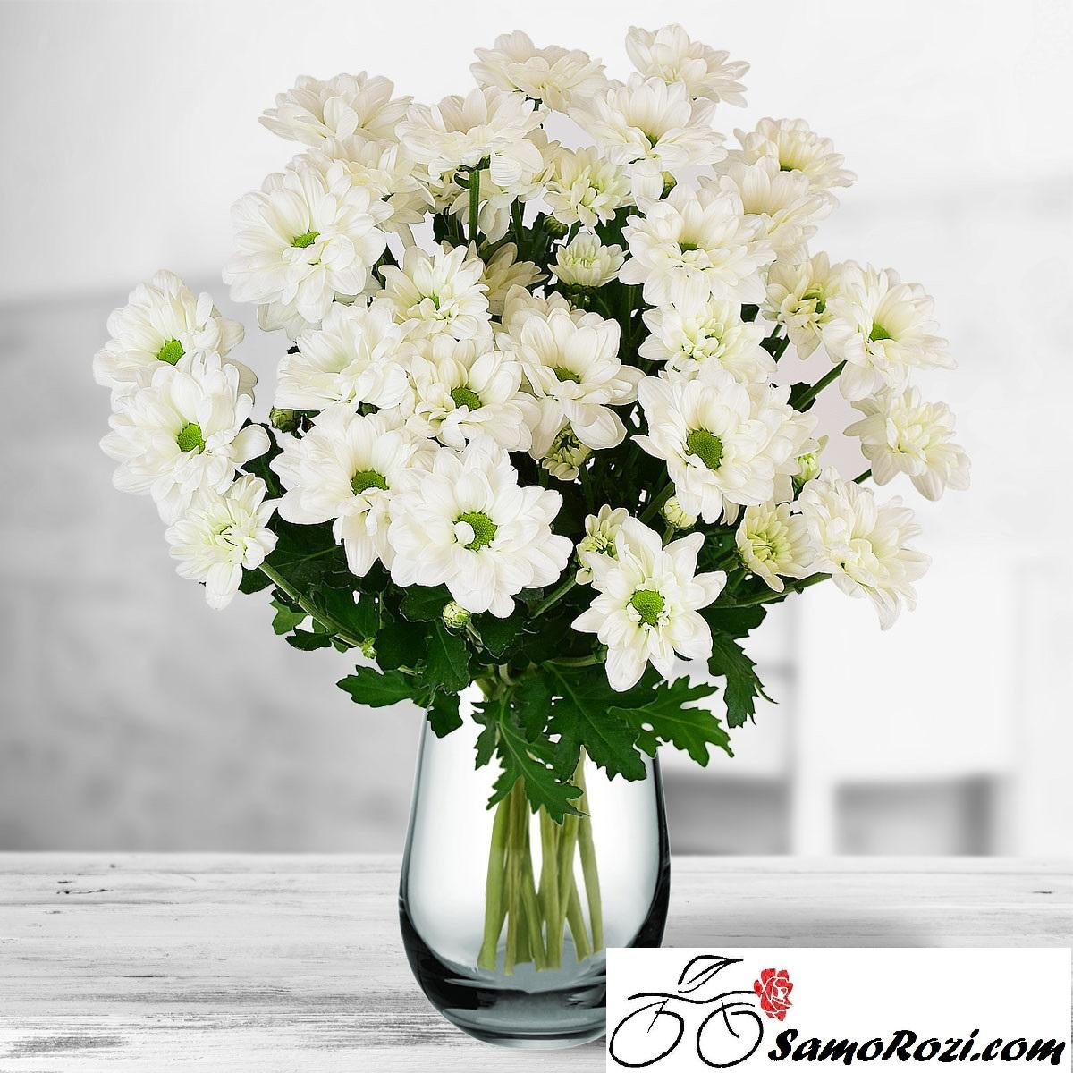Букет 5 бели хризантеми
