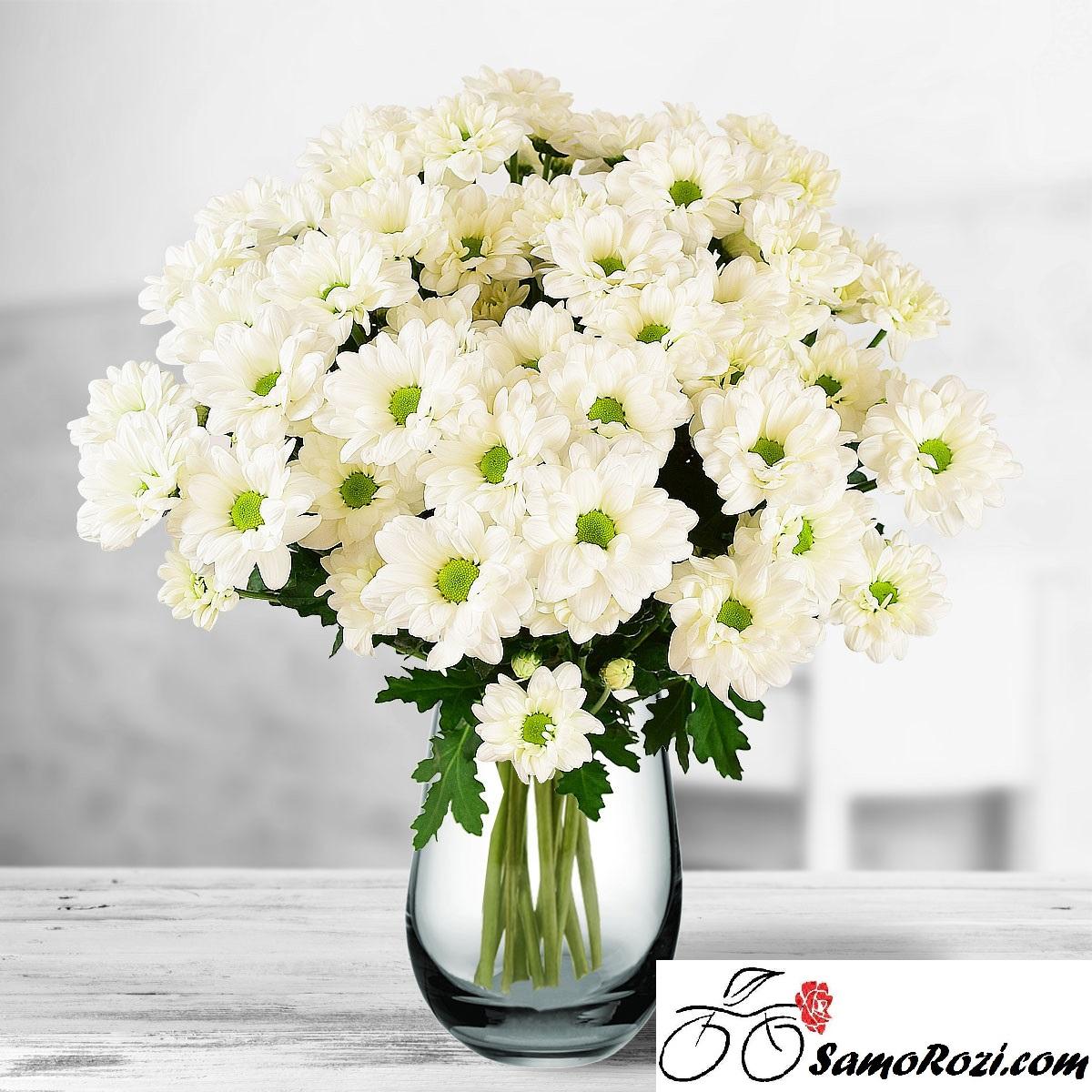 Букет 7 бели хризантеми