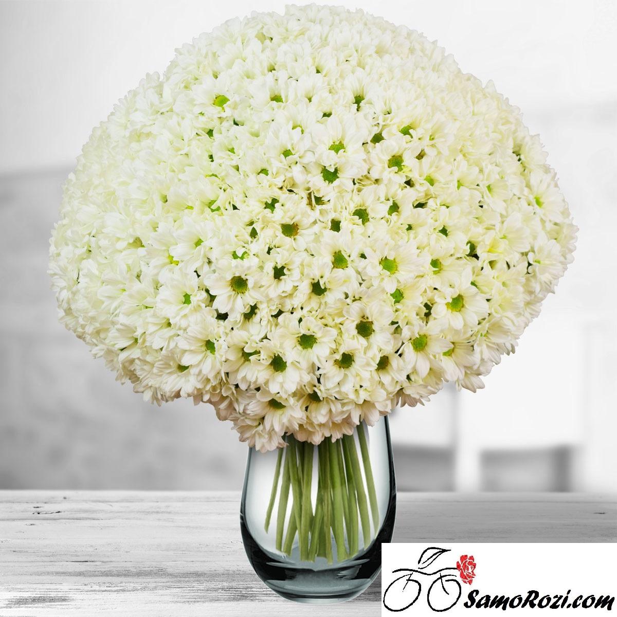 Букет 75 бели хризантеми
