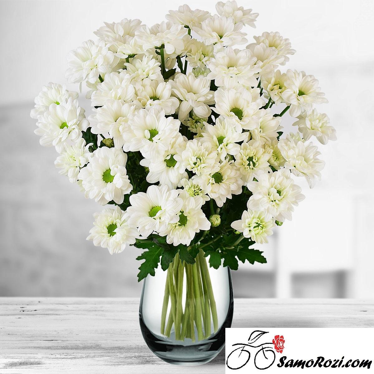 Букет 9 бели хризантеми