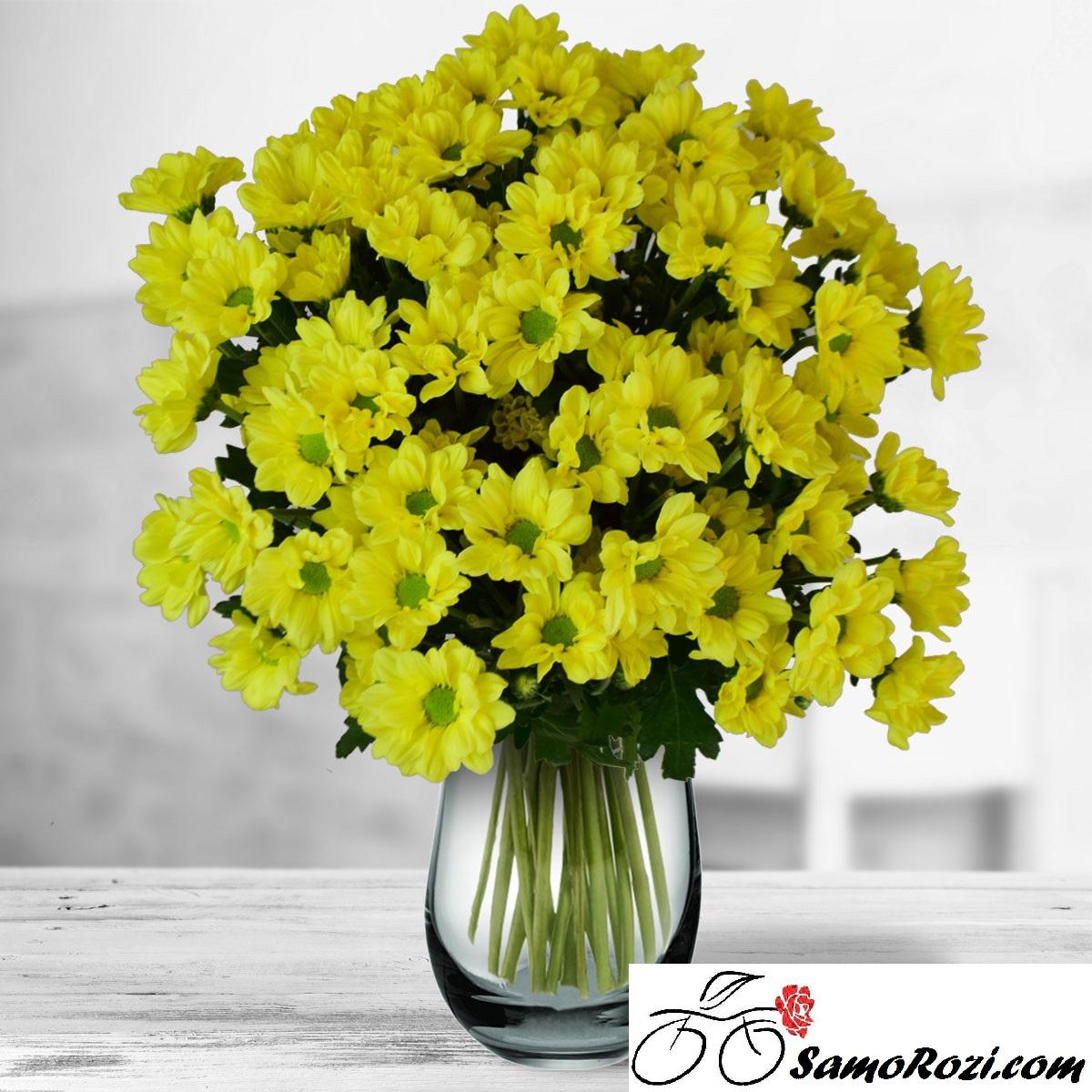 Букет 9 жълти хризантеми