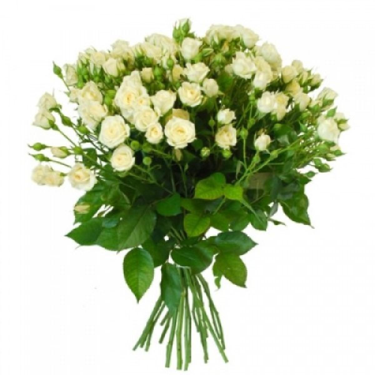 Букет от 11 до 15 бели спрей рози (ти избираш броя)