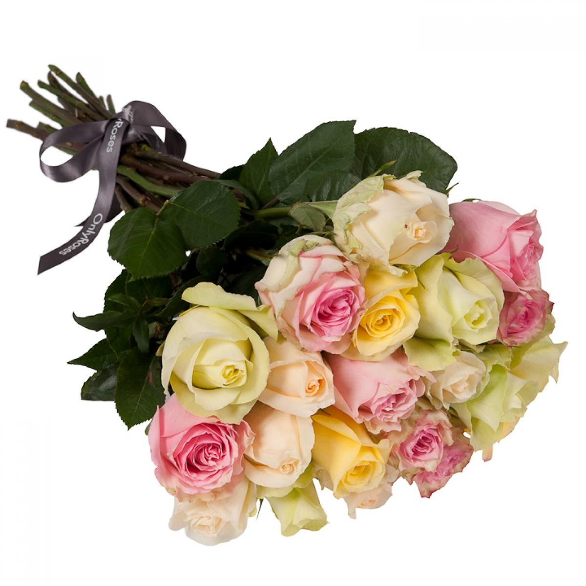 Букет от 11 до 15 рози в пастелна гама (ти избираш броя)