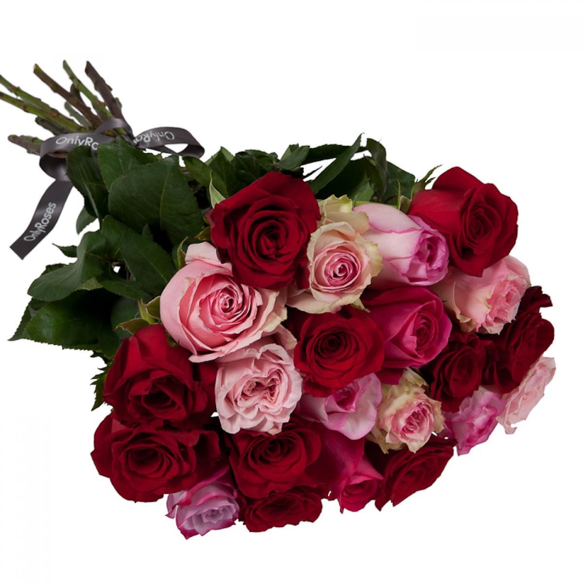 Букет от 11 до 15 рози в червено/розова гама (ти избираш броя)