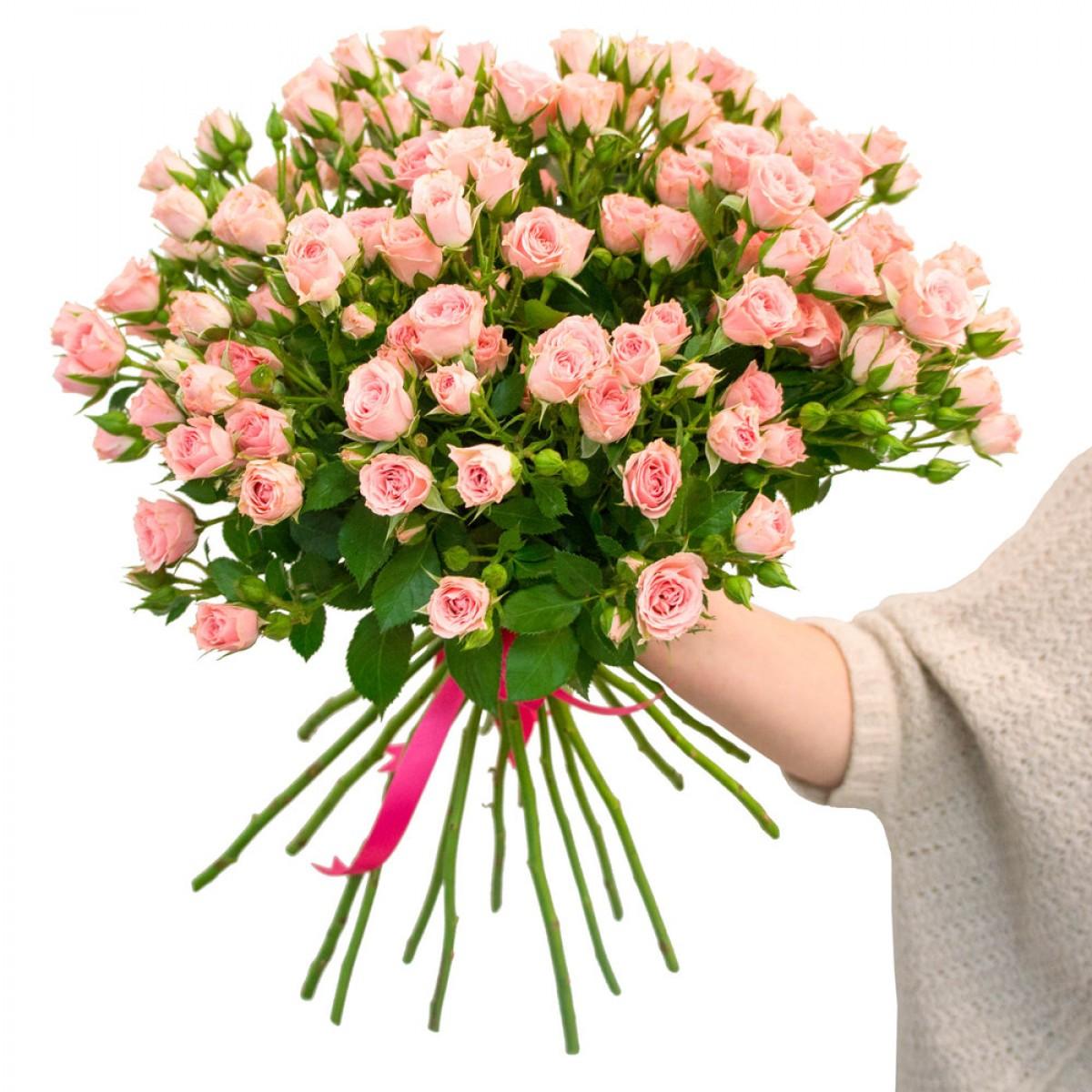 Букет от 15 до 25 светло-розови спрей рози (ти избираш броя)