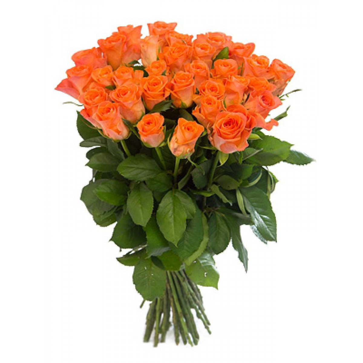 Букет от 15 до 25 оранжеви рози (ти избираш броя)