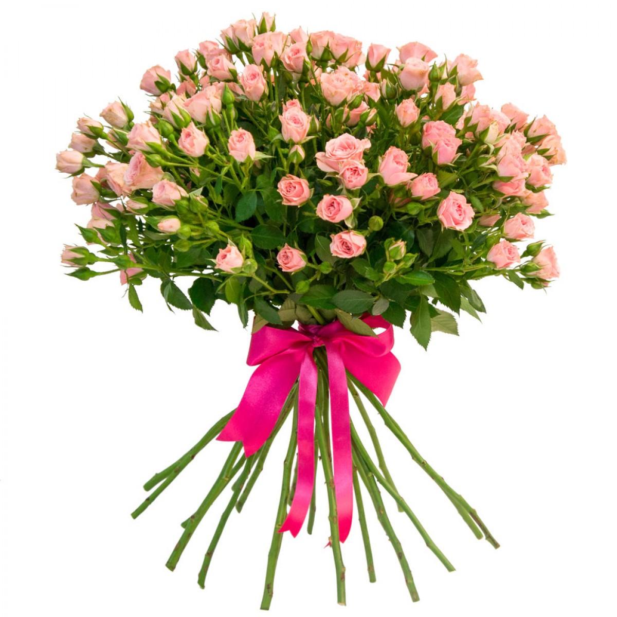 Букет от 11 до 15 светло-розови спрей рози (ти избираш броя)