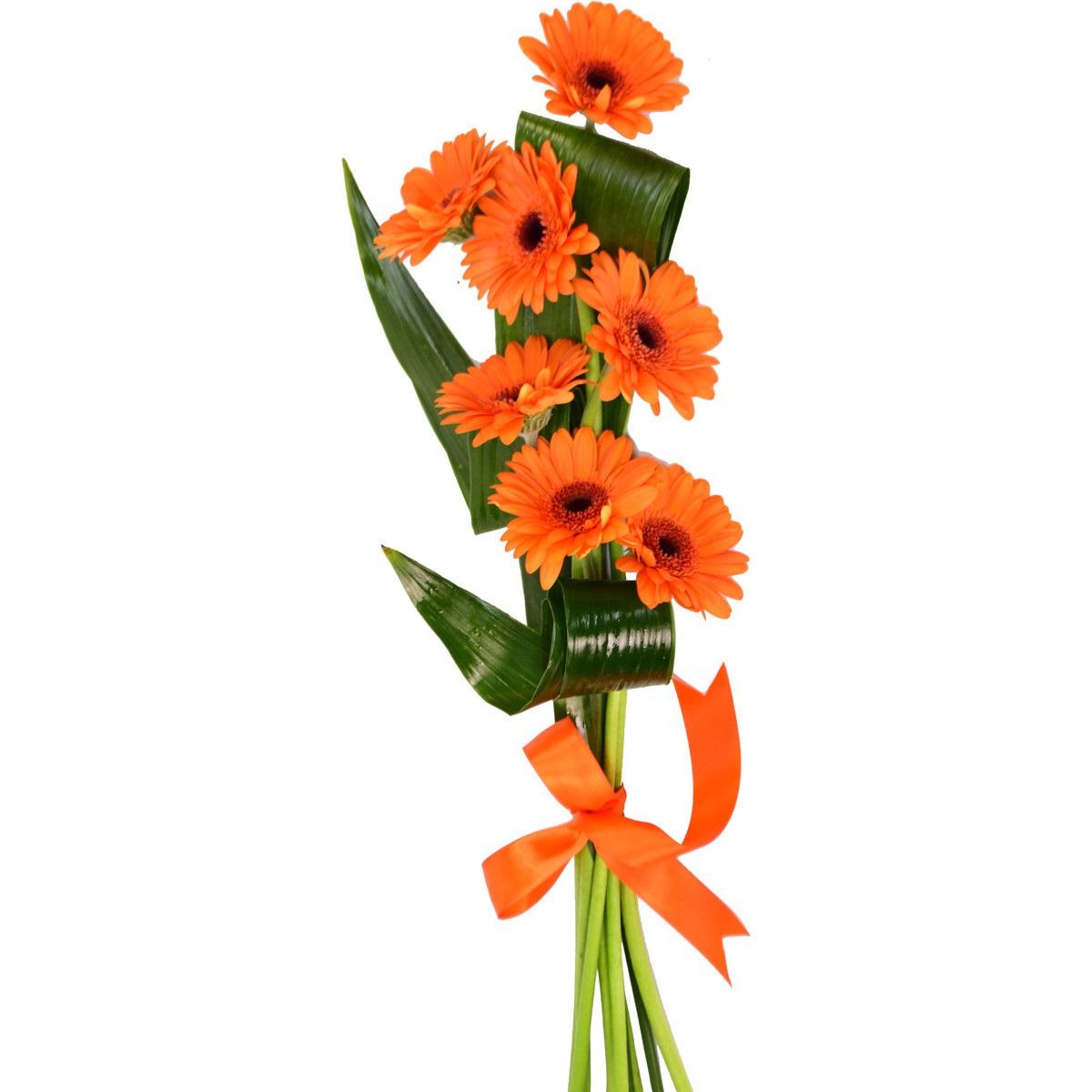 Букет 7 оранжеви герберa