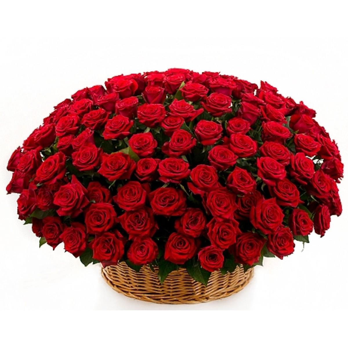 Кошница от 201 червени рози Grand prix