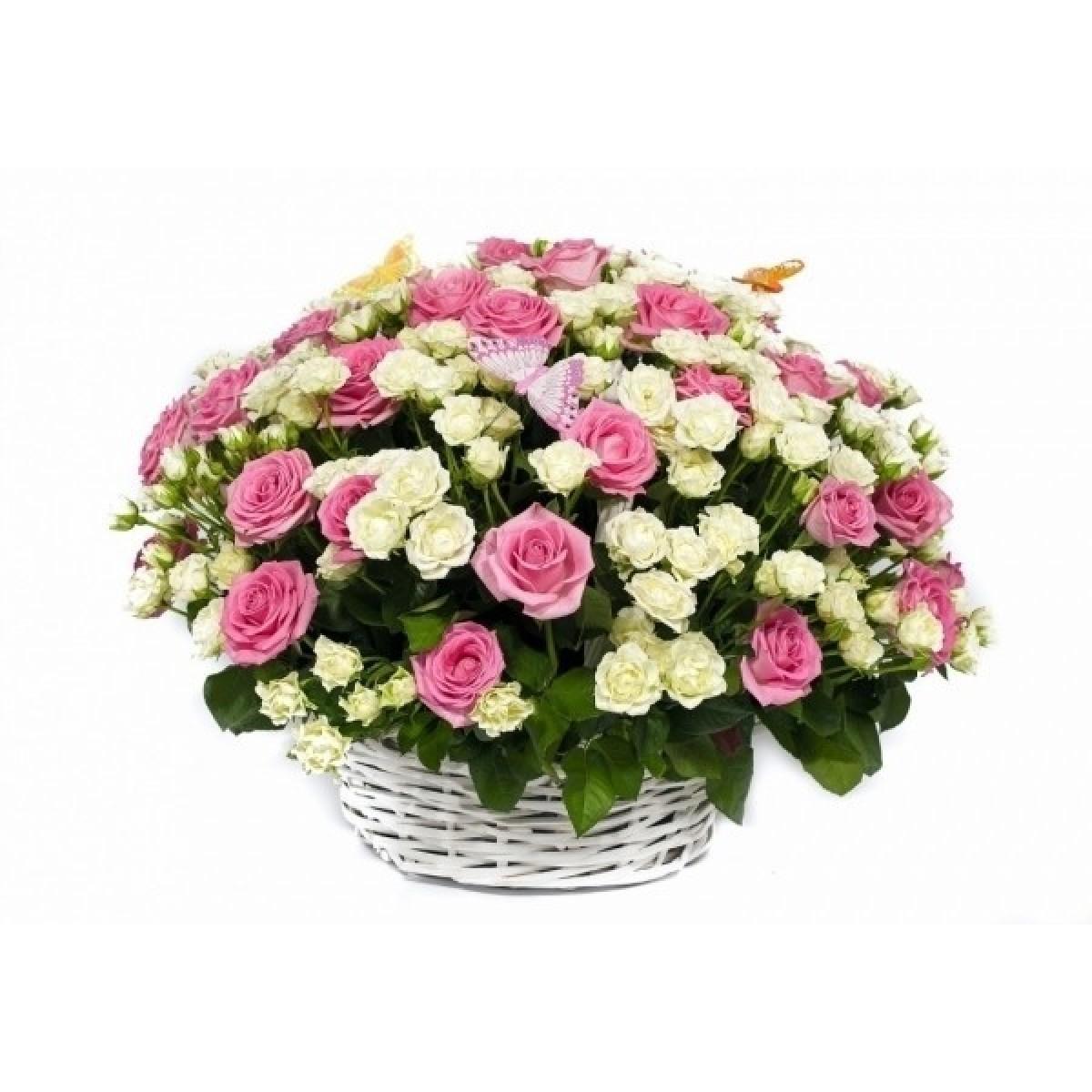 Кошница от 75 бели спрей и розови рози и зеленина