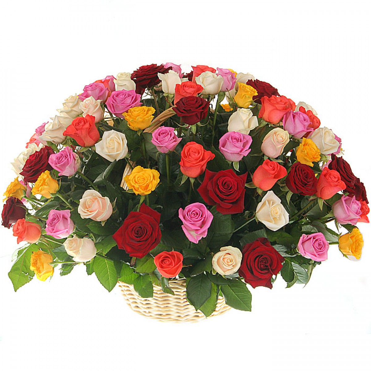 Кошница от 75 рози микс и зеленина