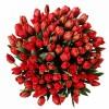 Лалета за оссми март - Букет от червени лалета - брой по Ваше желание