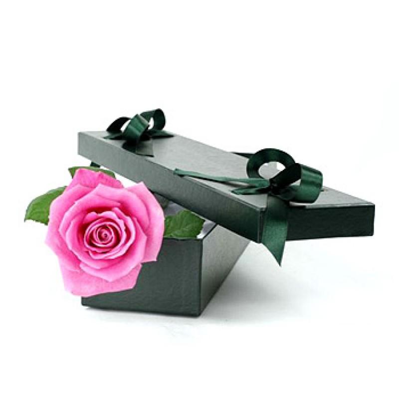 ВСИЧКИ БУКЕТИ РОЗИ - 1 розова роза в стилна кутия