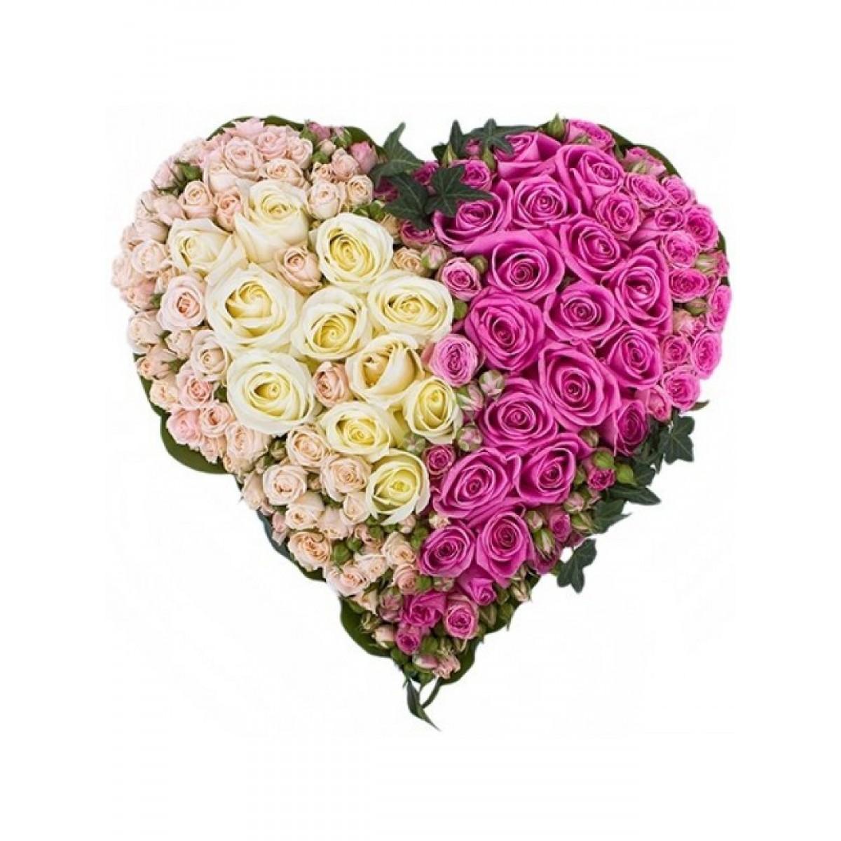 Сърце от 101 Бели и Розови Рози