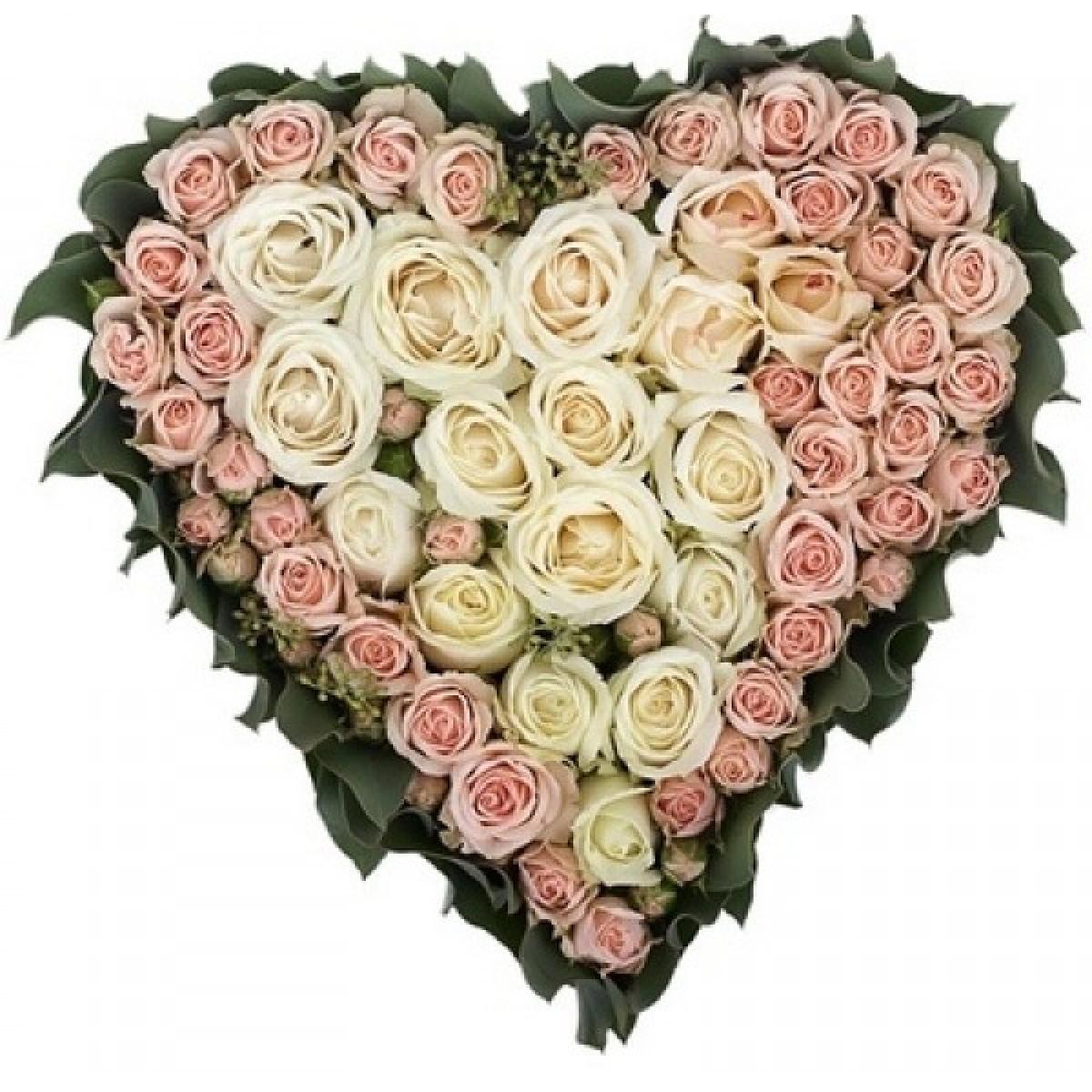 Сърце от 101 Кремави и Розови Рози